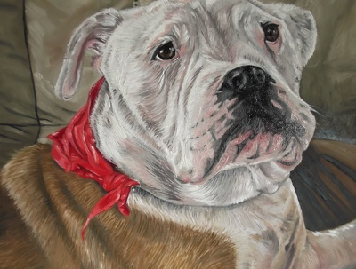 Paint a portrait of your pet or favourite animal