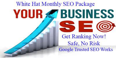 Provide 100% white hat 1 month SEO package - Google Safe SEO Link build service