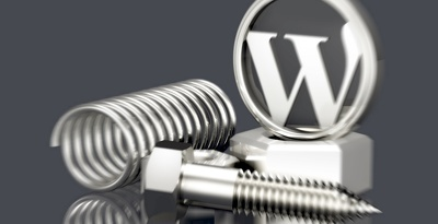Provide 1 hour of maintenance / updates / customization to WordPress website