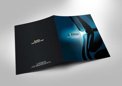 Design a professional brochure/flyer/catalogue/