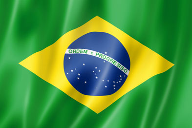 Translate 700 words of traditional or Brazilian Portuguese to English or vice-versa