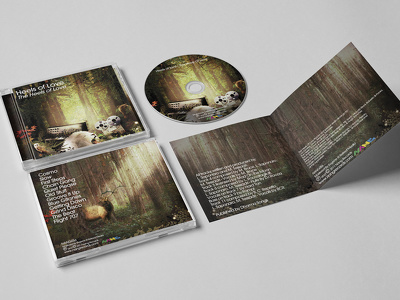 Design a stunning CD Cover/Packshot