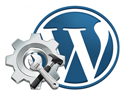 Fix wordpress fixes theme issues website hacks, installation errors, plugins problems