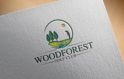 design bespoke logo with unlimited concepts and revisions