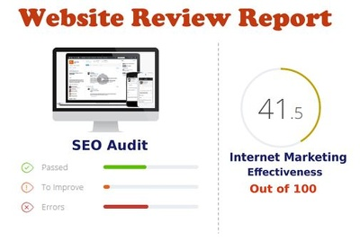 Provide SEO audit or website review report