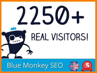 Get 2250+ REAL Visitors for for SEO ranking, Traffic & exposure to your website