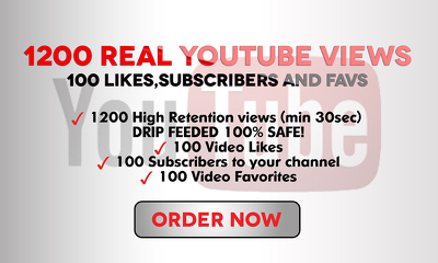 Give 1200 real YouTube views and 300 likes subscribers favs