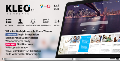 Customize / modify Wordpress theme professionally as required