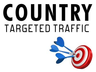 Send 2500 Country & Category Targeted Organic Traffic to Your Website