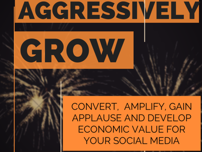 Provide social media growth hacking expertise & consultancy