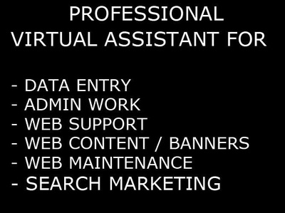 Be your virtual assistant for Data Entry, Admin Work, Web Management