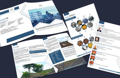 Design a very impressive and professional company profile / business profile for you