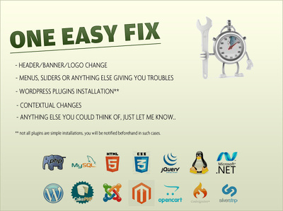 Provide one fix/tweak for any wordpress or static website.