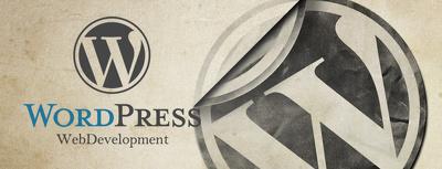 Design & Develop a Responsive, SEO Optimised Wordpress Website
