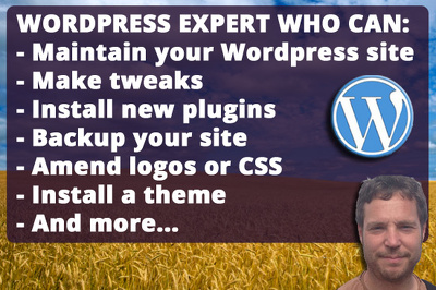 Maintain your Wordpress site, make updates, fix any issues.