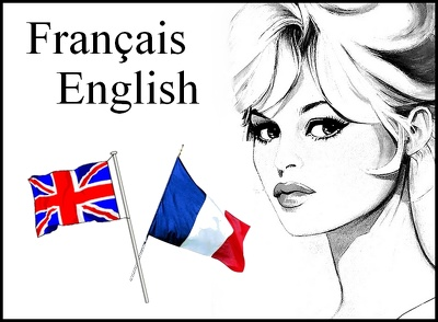 Translate from English to French (up to 500 words)