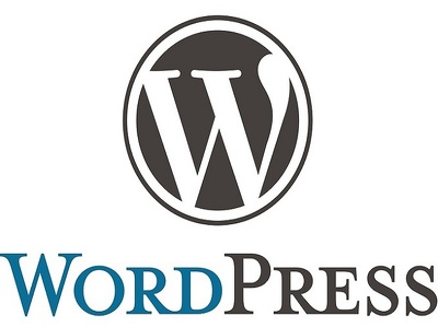 Solve your Wordpress css,html,php and other issues