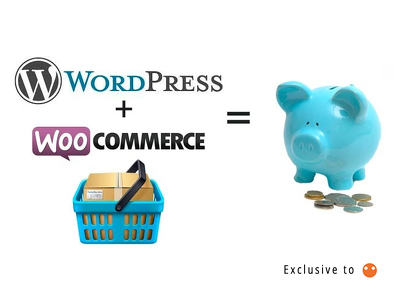 Install and develop your responsive WordPress / WooCommerce website
