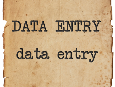 Provide 5 hours data entry task