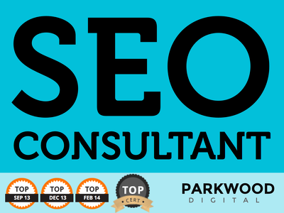 Be your SEO consultant. Back links, SEO, website review etc