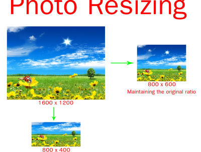 Crop and resize your 150+/- images into any lower size(Height x Width) you specify