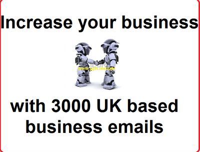 Provide you with 3,000 data records for U.K. based businesses