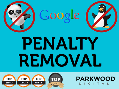 Provide Google Manual Penalty removal (100% success rate)