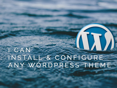 Help you install WordPress theme demo data and 3rd party plugins
