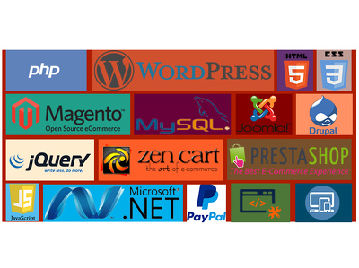 Install wordpress/joomla/magento on your hosting