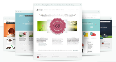 Install WordPress Elegant Theme and add the Lifetime Update code