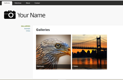 Build a website for a photographer or artist to use as a portfolio + domain & hosting
