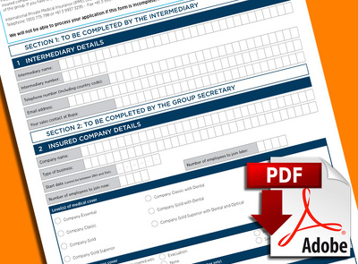 Supply an interactive PDF form (inc. VAT)