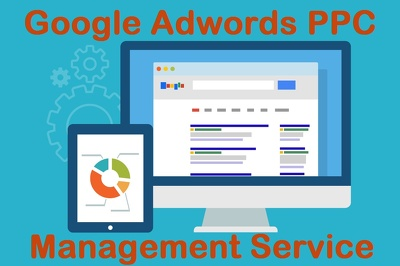 Manage your Google Adwords PPC Account & Campaign & Make Changes.