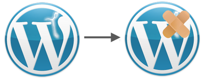 Fix all minor issues on your WordPress site for a day