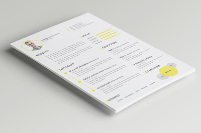 Design an classic and professional graphical Resume/CV
