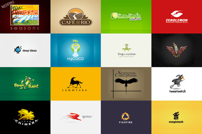 Design you a classy eyecatching logo for your business / website