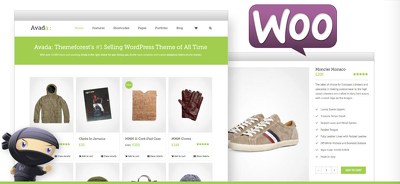 Develop WP WooCommerce theme from scratch