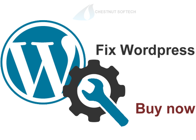 Provide 60 mins of fix / update/ tweak WordPress in you website
