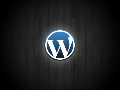 Fix and solve your Wordpress blog: CSS,HTML,php error, problem or issue