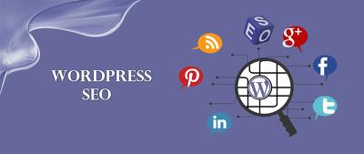 Offer wordpress seo from professional wordpress seo experts