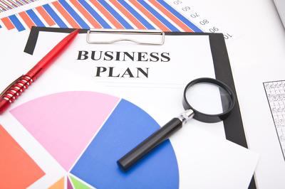Help you write a basic business plan