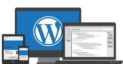 Offer consultation for Wordpress or PHP websites / redesign / development strategy