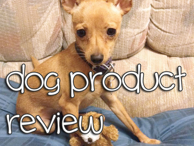 Write a dog product review with photos on my pet blog