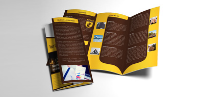 Professional Eye catchy Tri-Fold Brochure Design