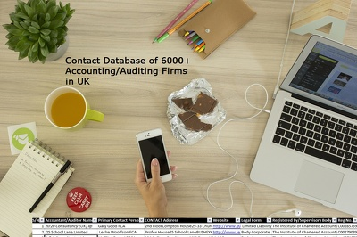 Contact Database of 6000+Accountants/Auditing Firms in UK
