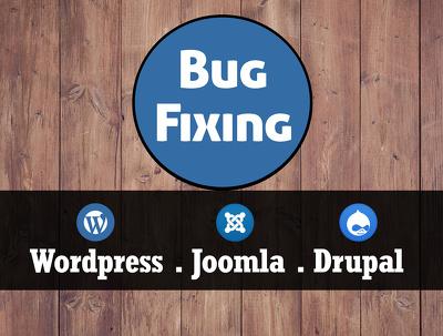 Fix Bugs & PHP Errors of Wordpress/Joomla/Drupal