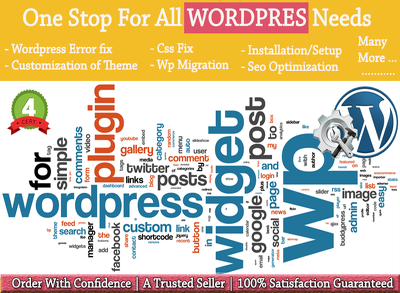 Fix WordPress error,fix css issue, optimization,theme customization