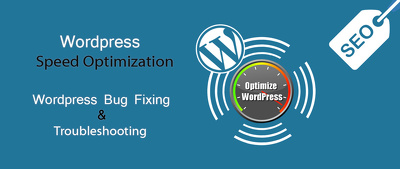 Fix any issue in your wordpress website