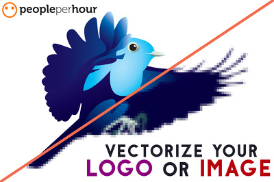 Professionally vector/vectorise your logo or image