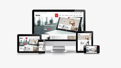 Design and Develop Responsive & SEO friendly Professional WordPress website